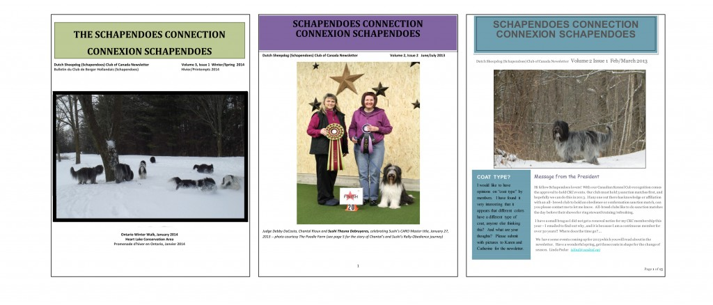 Schapendoes Connection Newsletter .